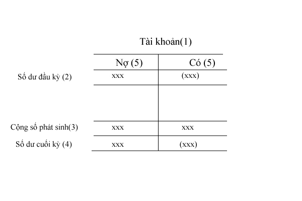 Vẽ sơ đồ chữ T