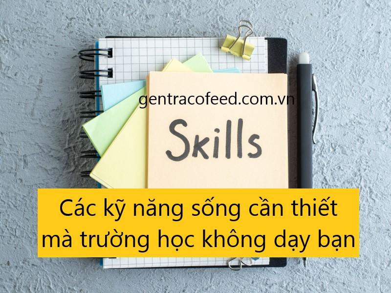 Các kỹ năng sống cần thiết mà trường học không dạy bạn