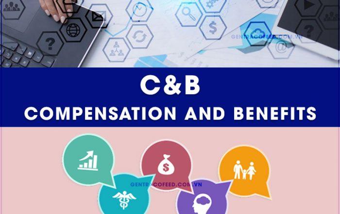 C&B là gì? Học C&B ở đâu tốt