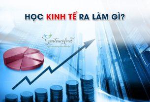 Học kinh tế ra làm gì?